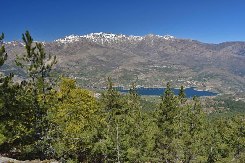 Wiosna widok Korsykańskie góry fotografia stock
