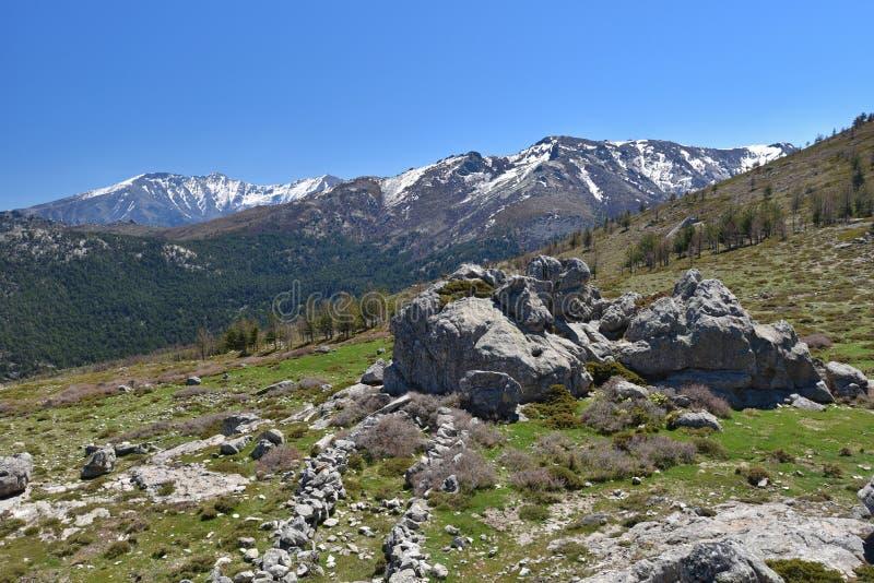 Wiosna widok Korsykańskie wysokie góry obraz stock