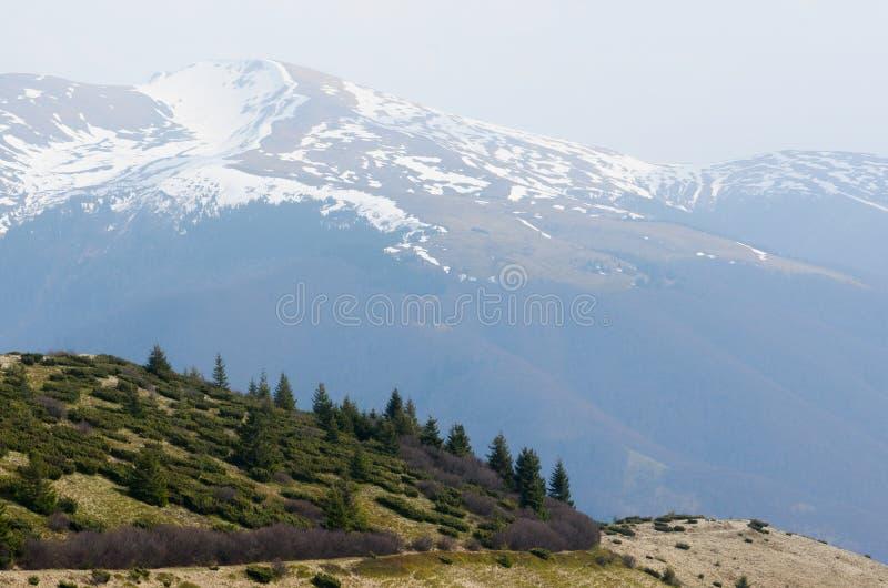 Wiosna widok z roztapiającym śniegiem w górach fotografia stock