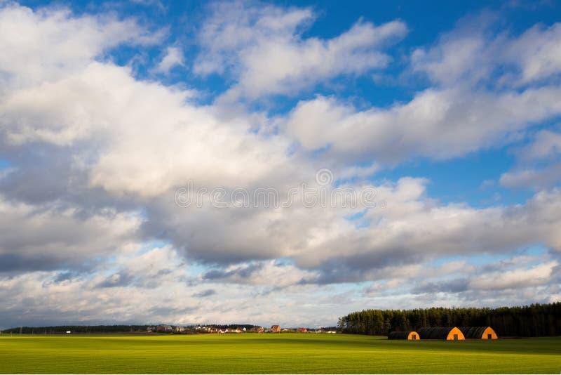 Wiosna wiejski krajobraz z zielonymi zim uprawami, wioska w t obrazy stock