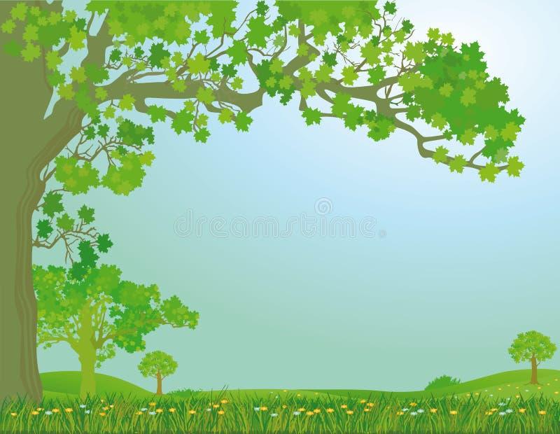 Wiosny łąka ilustracja wektor