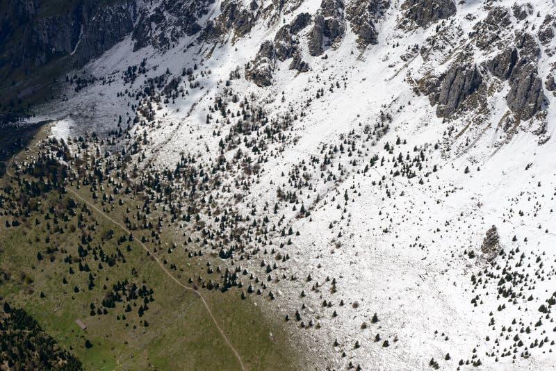 Wiosny śnieg, jodła i łąki na Presolana skłonach, Włochy zdjęcia stock