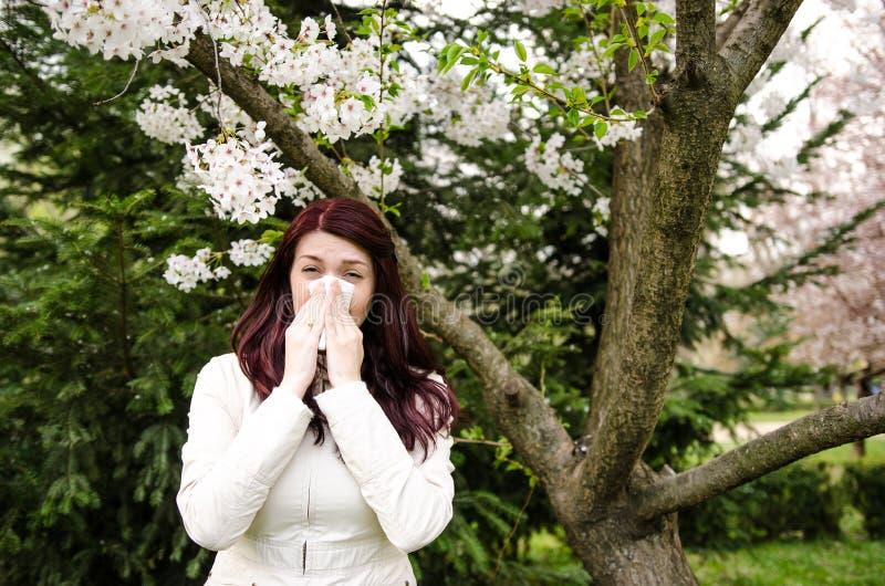 Wiosny alergia obraz royalty free