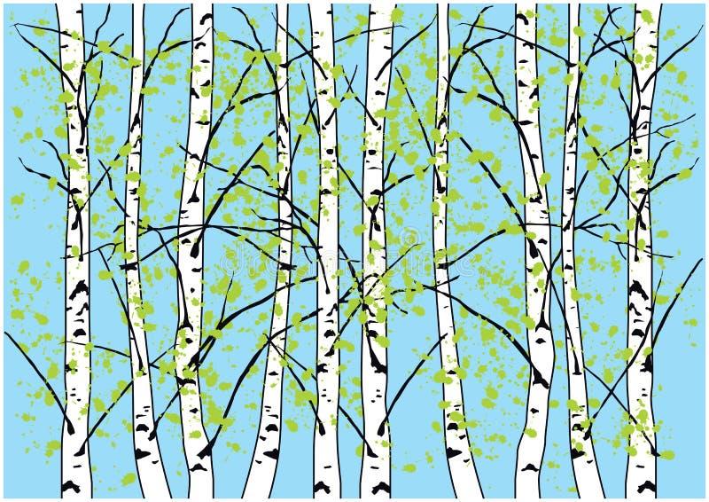 Wiosny brzozy drzewa ilustracyjni Brzozy niebieskie niebo i las obraz stock