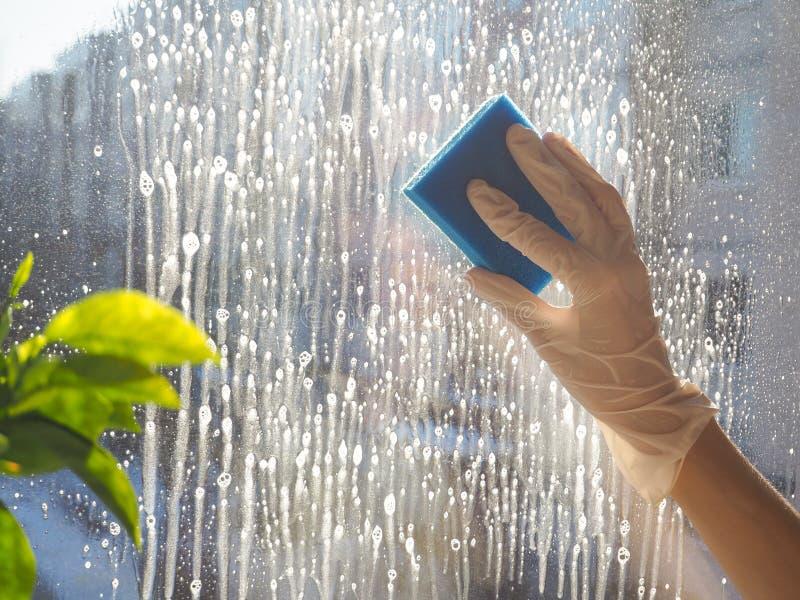 Wiosny cleaning - cleaning okno Kobiety ` s ręki myją okno, czyści fotografia stock