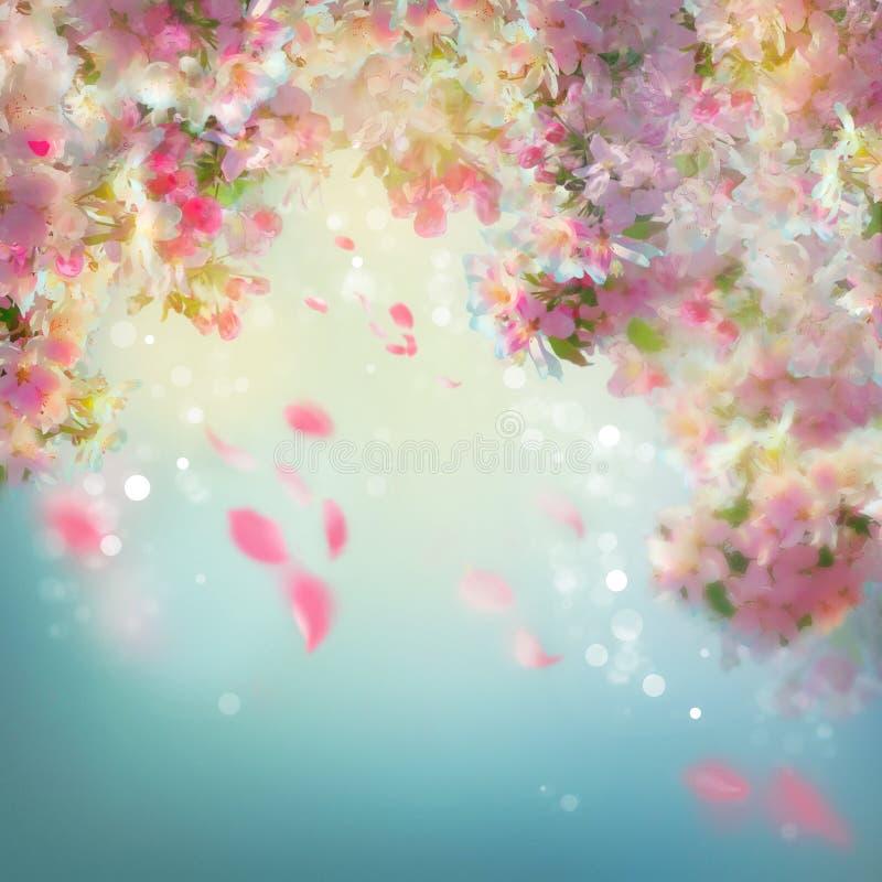 Wiosny Czereśniowego okwitnięcia tło ilustracji