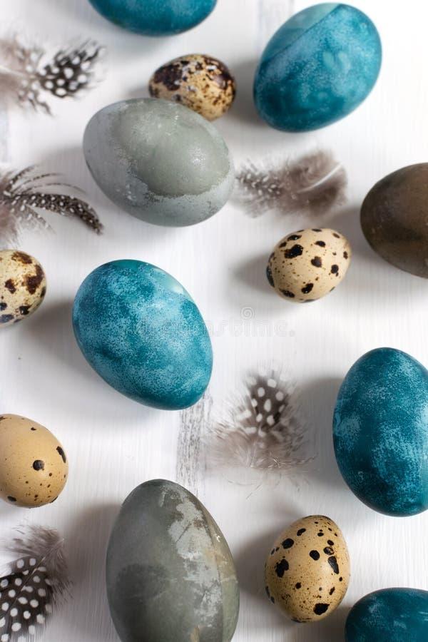 Wiosny Easter pojęcie, - naturalnie farbujący Easter jajka, przepiórek jajka, piórka, biały drewniany tło, kopii przestrze obraz stock