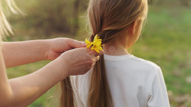 Wiosny fryzura obraz stock