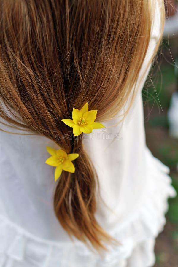 Wiosny fryzura fotografia royalty free