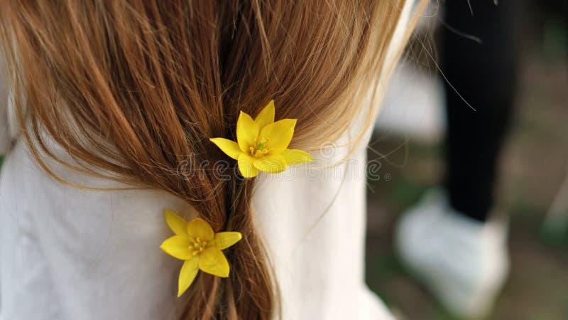 Wiosny fryzura zdjęcia royalty free