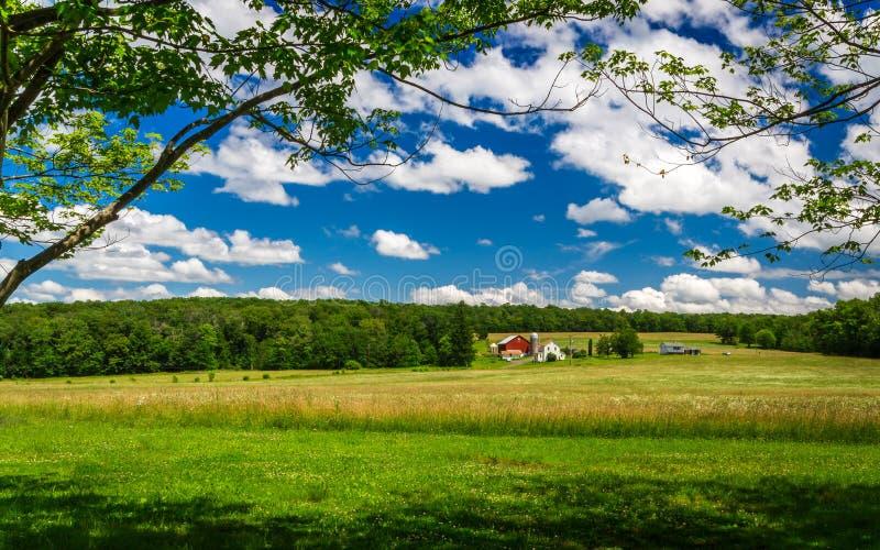 Wiosny gospodarstwo rolne zdjęcia stock