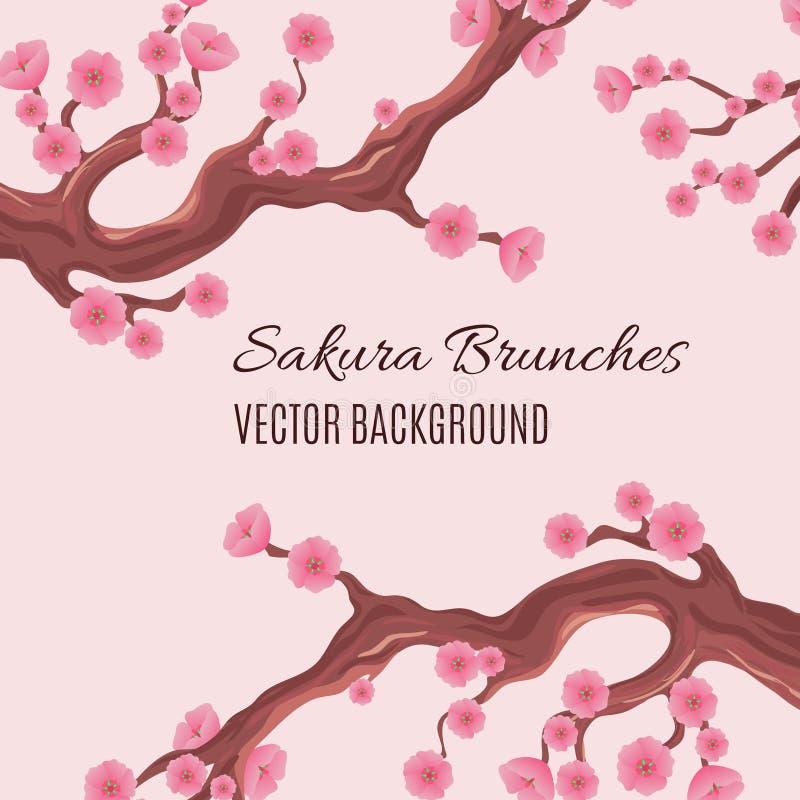 Wiosny japoński tradycyjny wektorowy tło z okwitnięcia Sakura drzewa czereśniowymi śniadanio-lunch royalty ilustracja