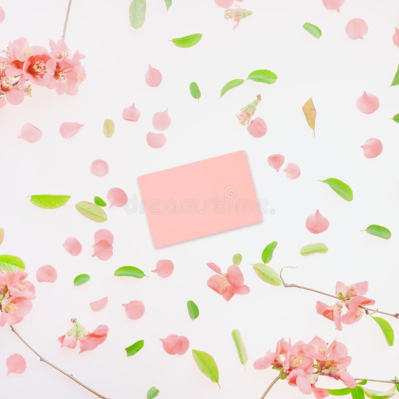 Wiosny kartki z pozdrowieniami egzamin próbny w górę obraz stock