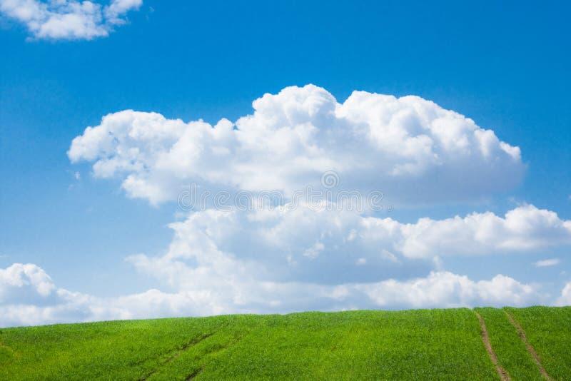 wiosny krajobrazowa sceneria - piękno w naturze, krajobrazach i środowiska pojęciu, zdjęcia stock