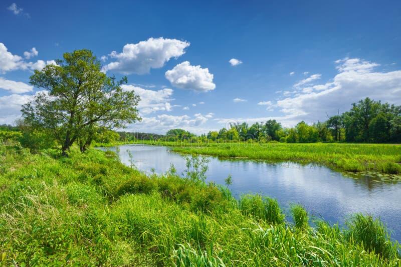 Wiosny lata rzeki krajobrazu niebieskie niebo chmurnieje wś obrazy royalty free