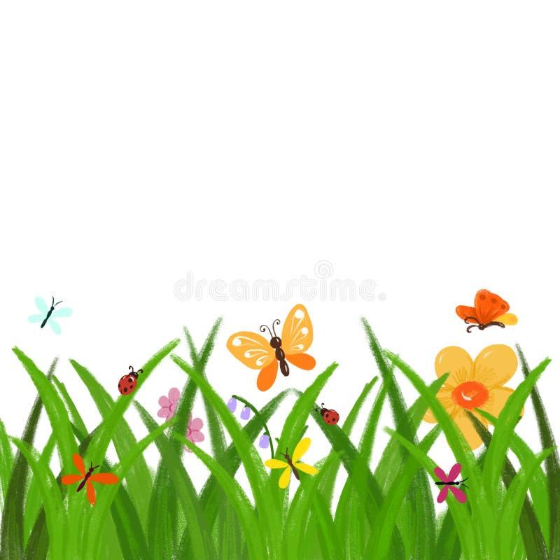 Wiosny lub lato klamerki ręka rysująca sztuka - zielona trawa z kwiatami i motyl granicą odizolowywającą bez tła dla wiosny ilustracja wektor