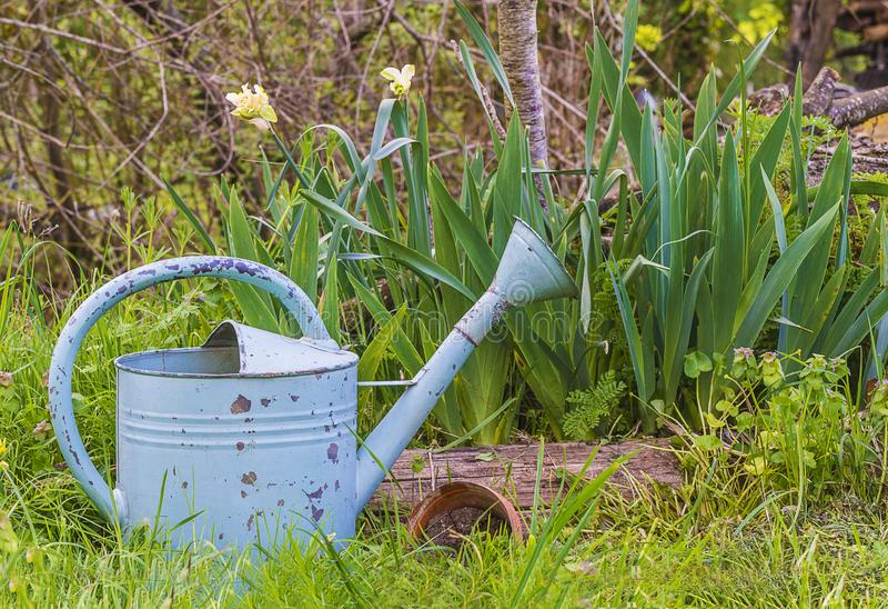 Wiosny ogrodnictwa skład w rocznika wieśniaka stylu obraz royalty free