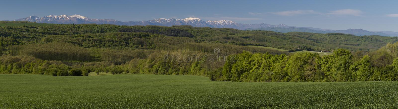 Wiosny panorama fotografia royalty free