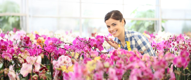 Wiosny pojęcie, uśmiechnięta kobieta w ogródzie orchidee kwitnie obraz stock