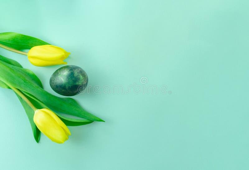Wiosny pojęcie z Wielkanocnym jajkiem i żółtymi tulipanami na turkusowego błękita tle Mieszkanie nieatutowy kosmos kopii zdjęcia royalty free