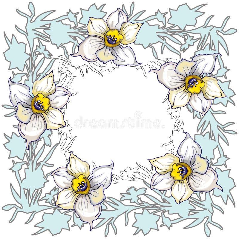 Wiosny round kwiecista rama z ręką rysującą kwitnie Daffodils royalty ilustracja