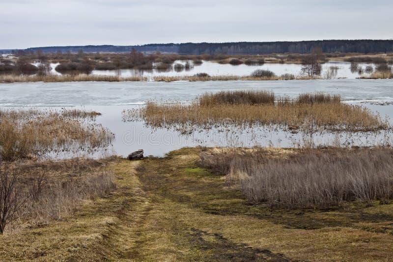 Wiosny rzeka zdjęcia royalty free