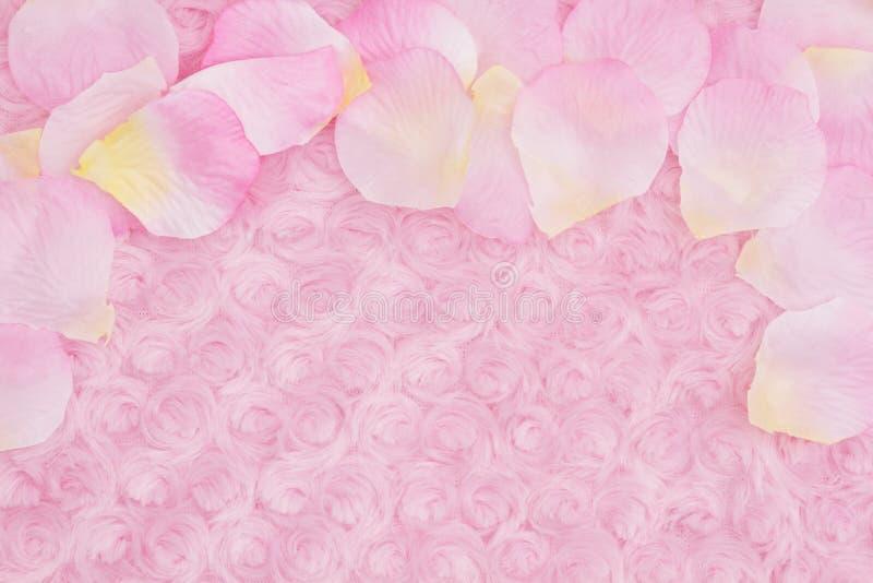 Wiosny tło z kwiatu płatkami na jasnoróżowej różanej pluszowej tkaninie obraz stock