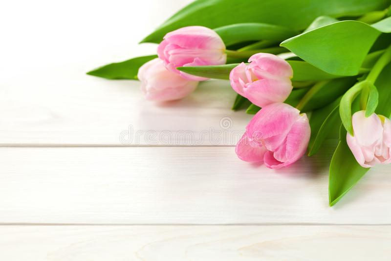 Wiosny tło z tulipanowymi kwiatami obraz royalty free