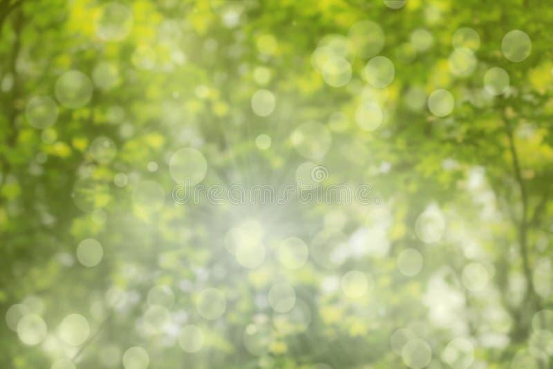 Wiosny tło, zamazujący krajobraz fotografia royalty free