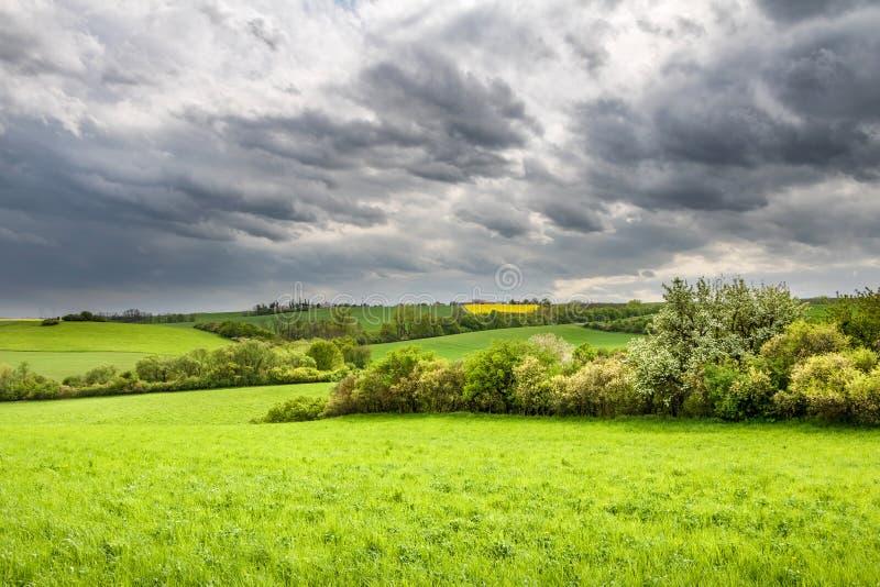 Wiosny wieś z zielonymi łąkami i drzewami pod dramatycznym s zdjęcia royalty free