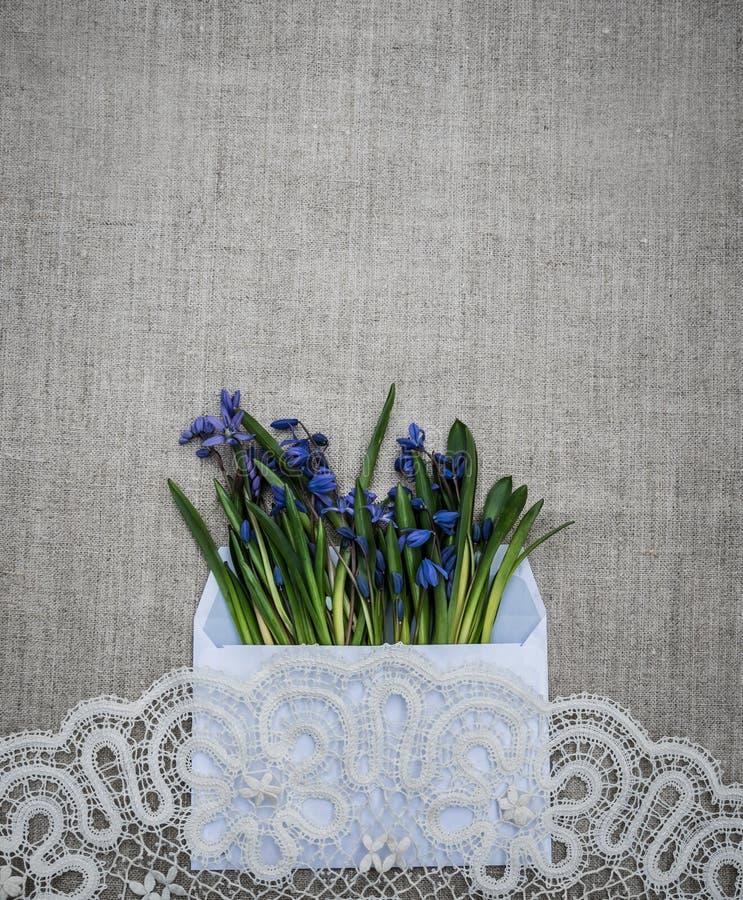 Wiosny Wielkanocna karta Koronki i wiosny wildflowers zdjęcie royalty free