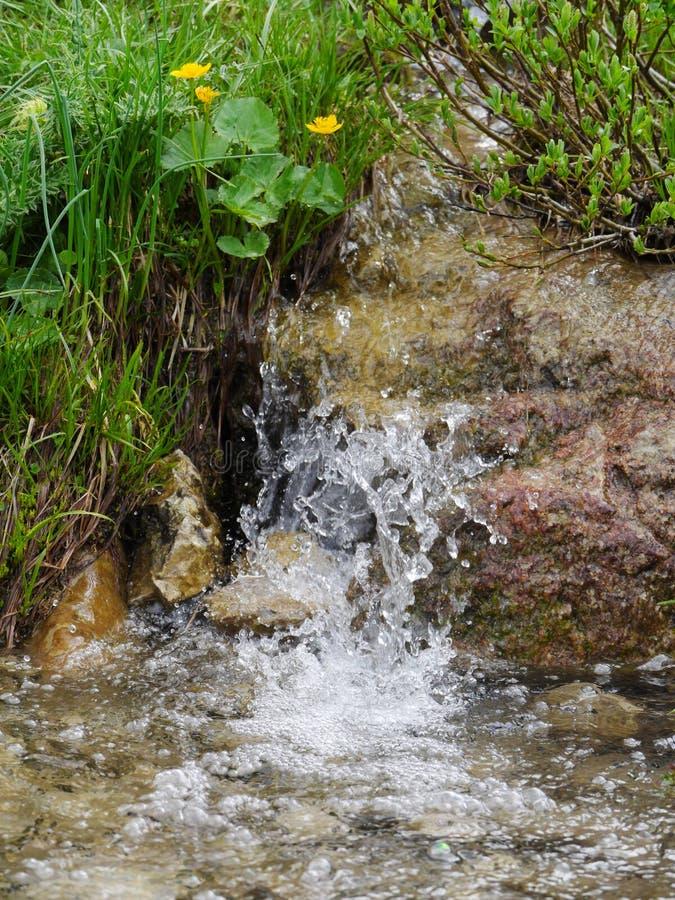 Wiosny wodna fontanna obraz royalty free