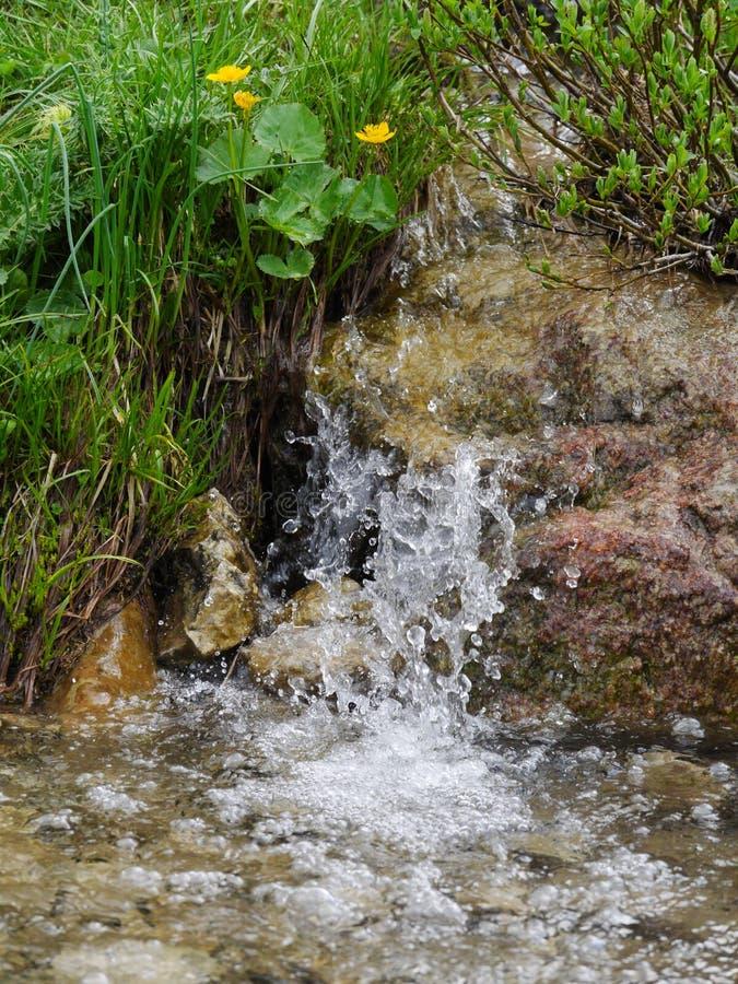 Wiosny wodna fontanna zdjęcie royalty free