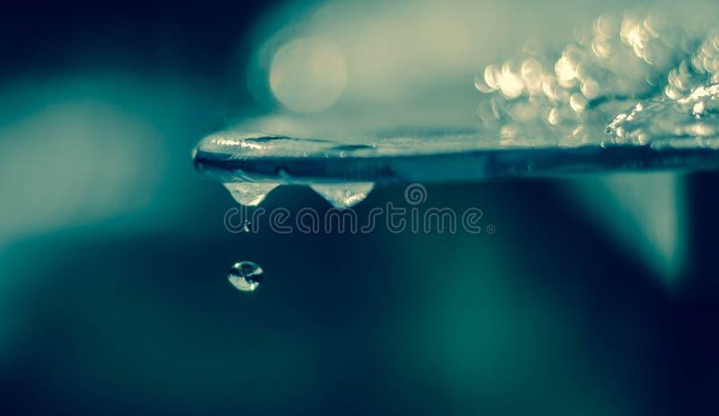 Wiosny wody kropli kropelek globalne ocieplenie fotografia royalty free