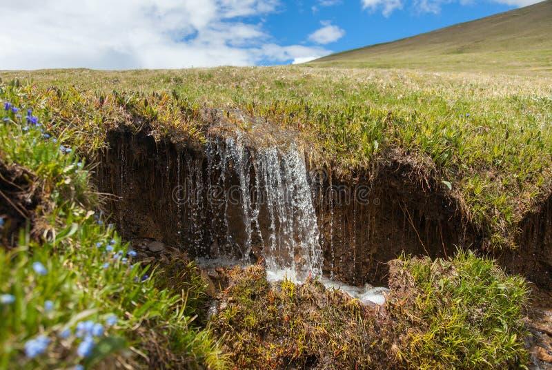 Wiosny zatoczka obrazy stock