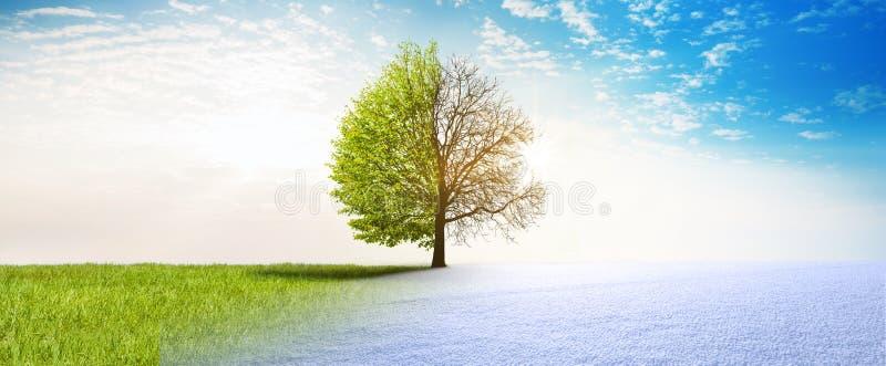Wiosny zimy zmiana royalty ilustracja