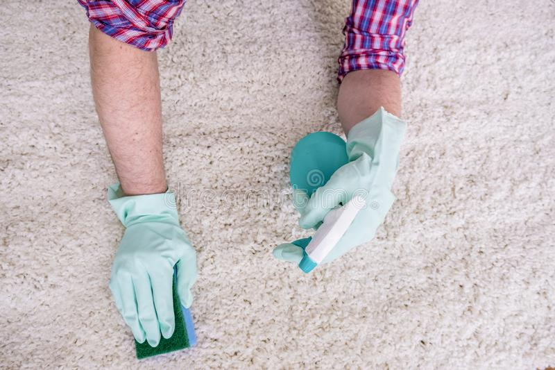 Wiping wooden white carpet and floor with a sponge. Close up hands cleaning white carpet floor with sponge stock images