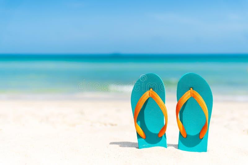 Wipschakelaar op zandig strand, groene overzees en blauwe hemelachtergrond stock afbeeldingen