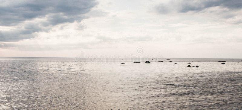 Wirbelsturm mit Regen und Wind lizenzfreies stockbild