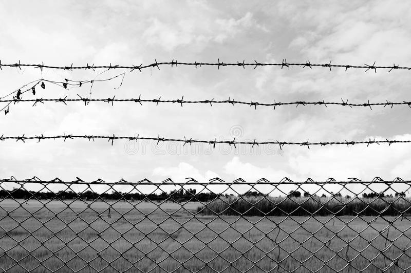 Barbed wire imprison, detention center, incarcerate, at countryside and background gray color style royalty free stock image