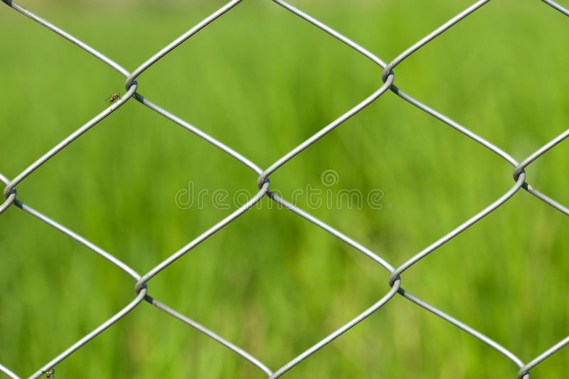 Download Wire Fence On Green Grass Background Stock Image - Image of green, pattern: 14857849