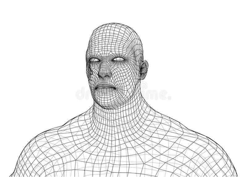 Wire frame athlete body on white background. Vector rendering of 3d. Wire-frame style. The layers of visible and invisible lines are separated vector illustration