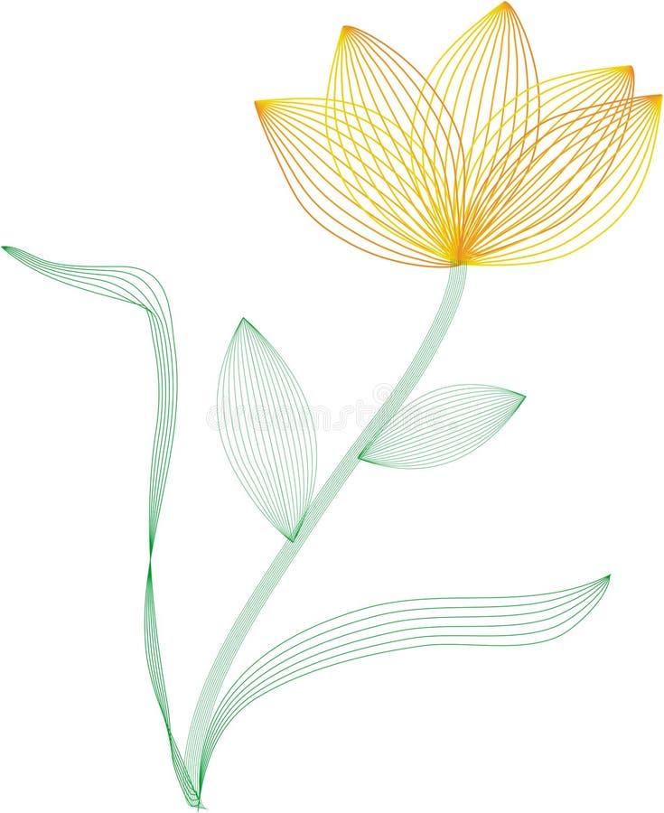 Wire frame flower vector illustration