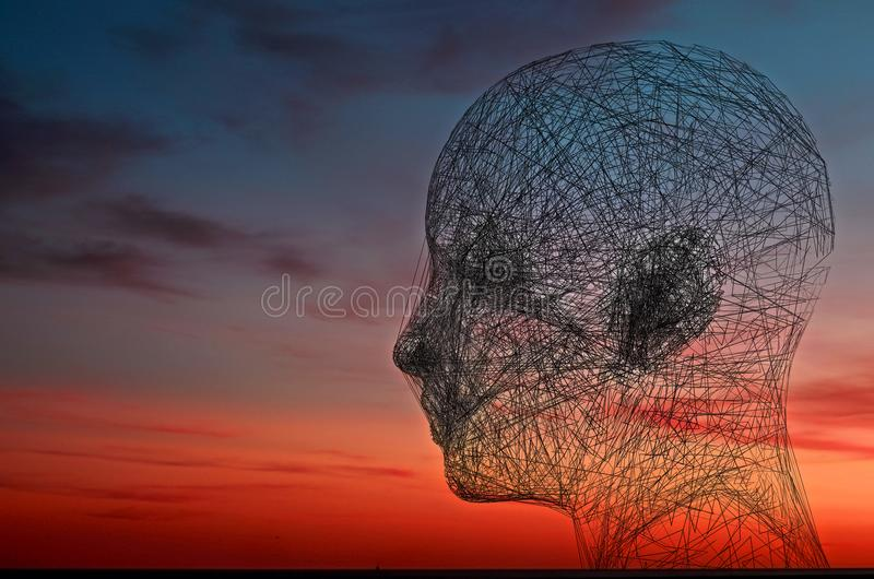 Wired face on sunset sky background. Psychology and connection concept 3D rendering.Wired face on sunset sky background. Psycholog royalty free illustration