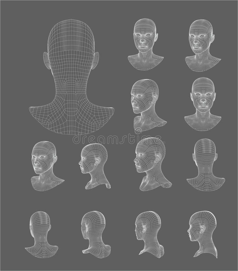 Free Wireframe Head 3d Model Vector Illustration Stock Images - 86595754