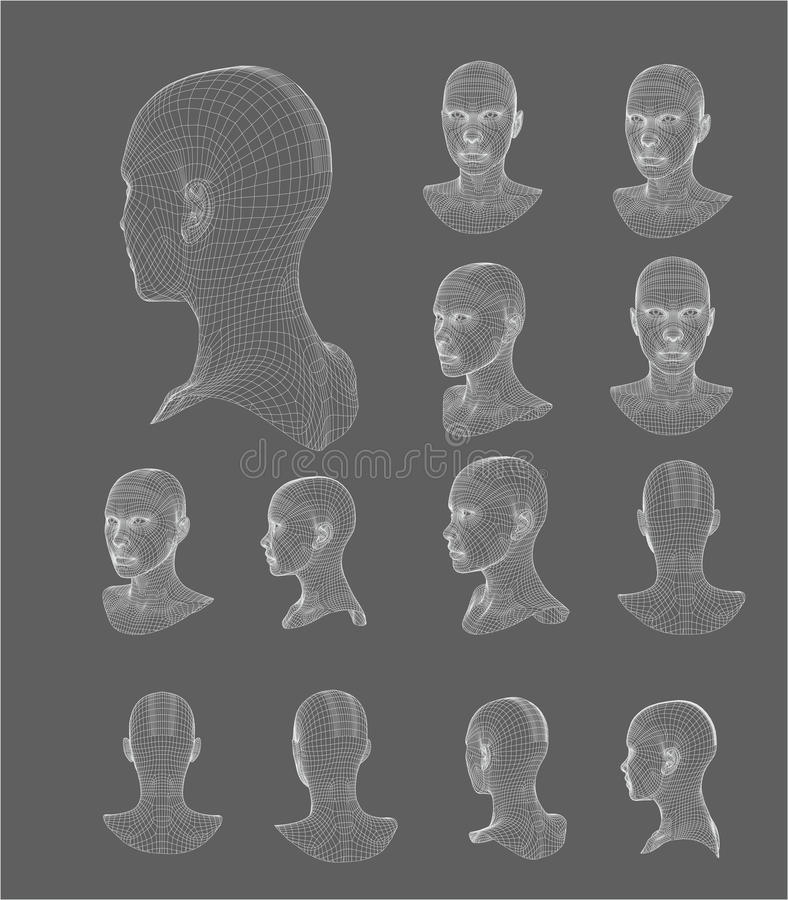 Wireframe head 3d model vector illustration royalty free illustration