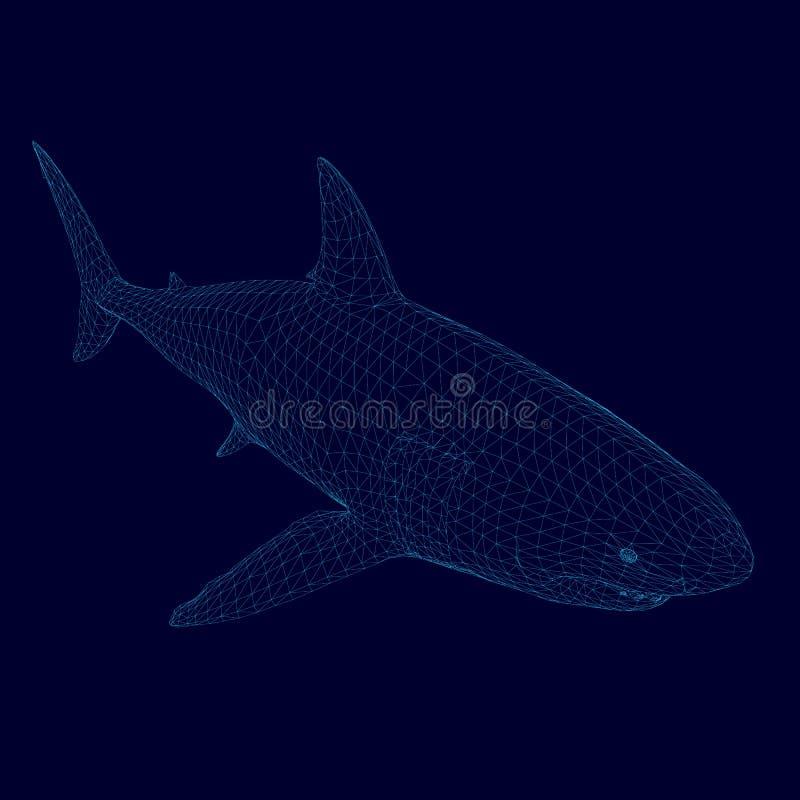 Wireframe poligonal del tiburón del vector de líneas azules en un fondo oscuro Visión isométrica 3d Ilustración del vector stock de ilustración