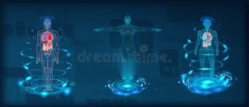 Wireframe polivinílico bajo del cuerpo humano stock de ilustración