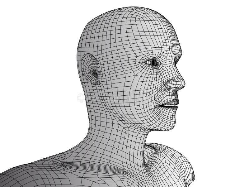 Wireframevektor för mänskligt huvud 3d på vit vektor illustrationer