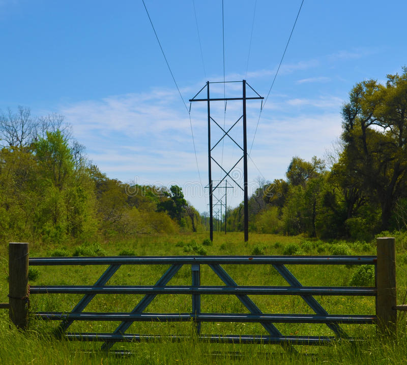 Free WIRES AND NATURE Royalty Free Stock Images - 41301589